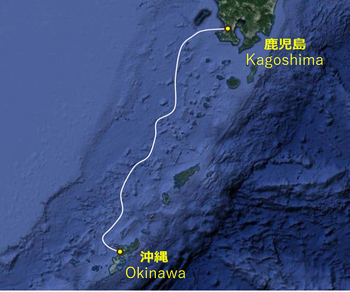 NEC TO BUILD SUB CABLE SYSTEM FOR OKINAWA CELLULAR TELEPHONE COMPANY